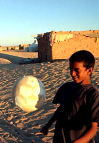 Beat of Distant Hearts: Art of Revolution In Western Sahara